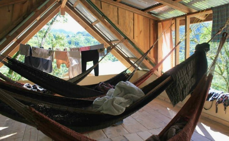 Image of hammocks