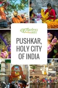 Image of Pushkar guide