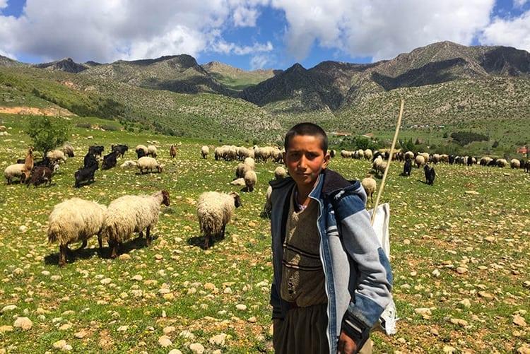 Joan Torres, Against the Compass, with an Iraqi shepherd boy in Kurdistan