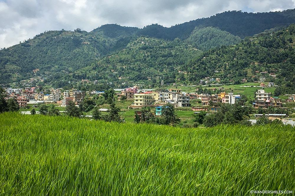 Paddy fields in Kathmandu Valley whilst mountain biking