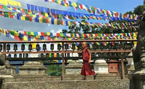 Buddhist Monk at Monkey Temple in Nepal