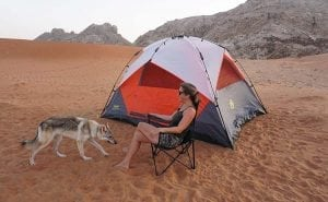 Camping with a wolf dog by Fossil Rock