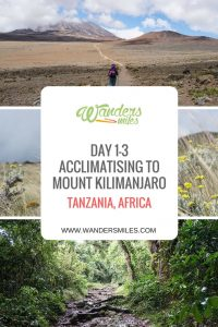 Day 1-3 acclimatising to the altutude for Kilimanjaro on the Marangu route staying at Mandara, Horombo and Kibo Huts. Travel blog by Wanders Miles.