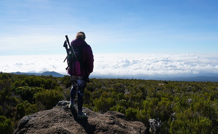 Day 5 on the Kilimanjaro trek. Descending to Mandar Huts. Wanders Miles looking out above the clouds.