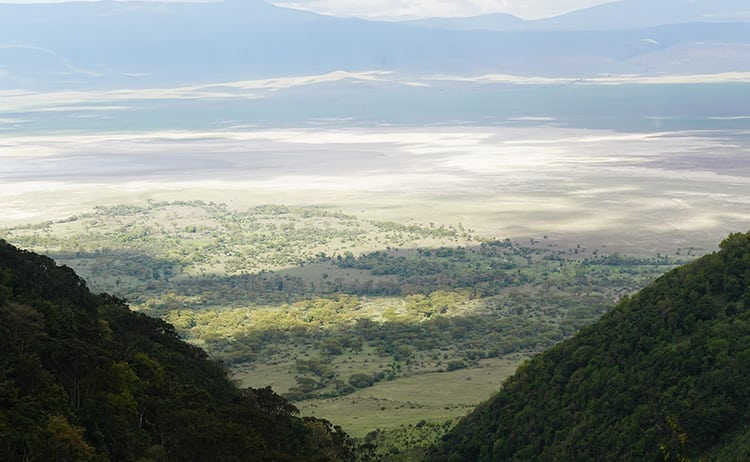 View to the floor of the Ngorongoro Crater, Tanzania