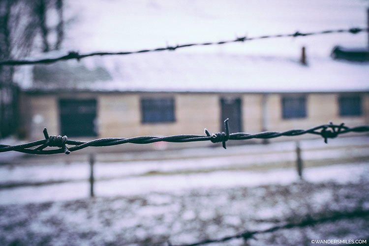 Berbed wire gates at Auschwitz