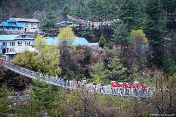 Yaks on suspension bridge near Phakding - Everest Base Camp Trek