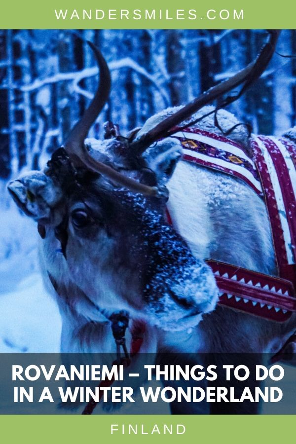 Read about things to do in Rovaniemi. This winter wonderland has so much to offer with reindeers, huskies and Santa Claus. Blog by Wanders Miles. #wandersmiles #visitfinland #rovaniemi