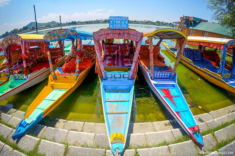 Colourful Shikaras boats on Nigeen Lake in Srinagar - Wanders Miles