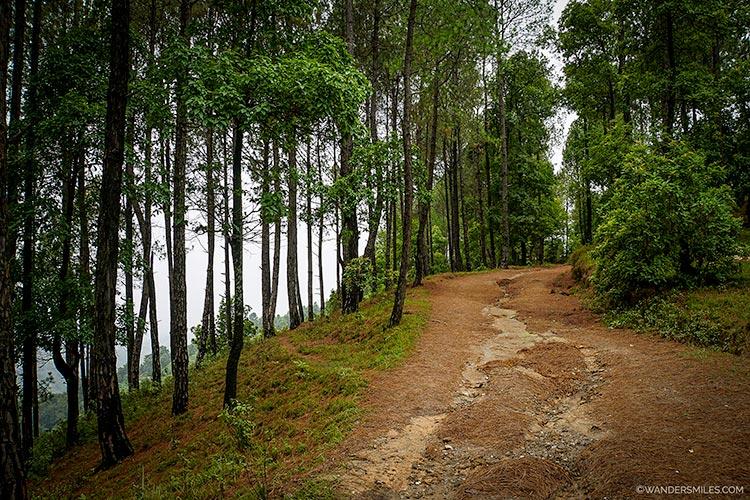 Trekking path from Changu Narayan in Kathmandu Valley