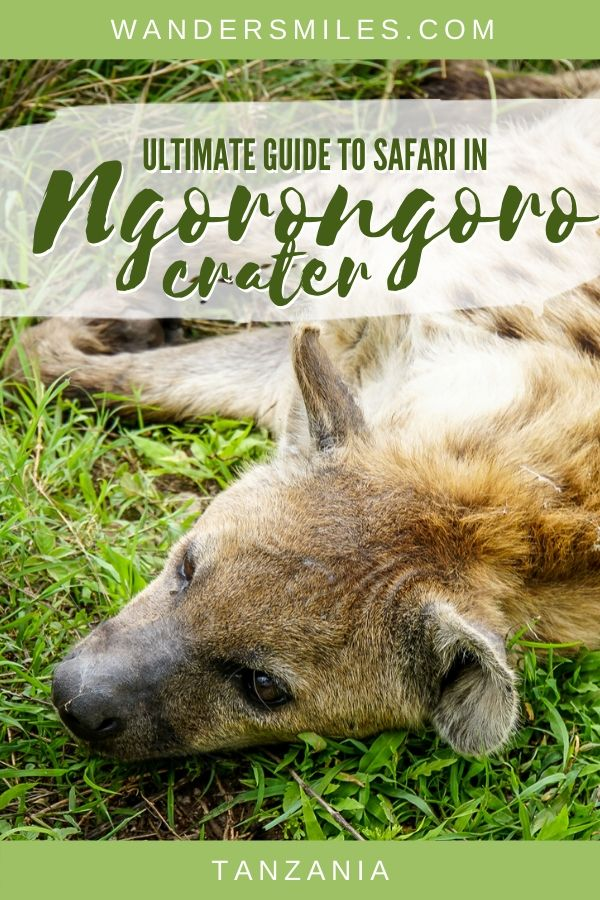 Tips on safari in Ngorongoro Crater, one of the best things to do in Tanzania
