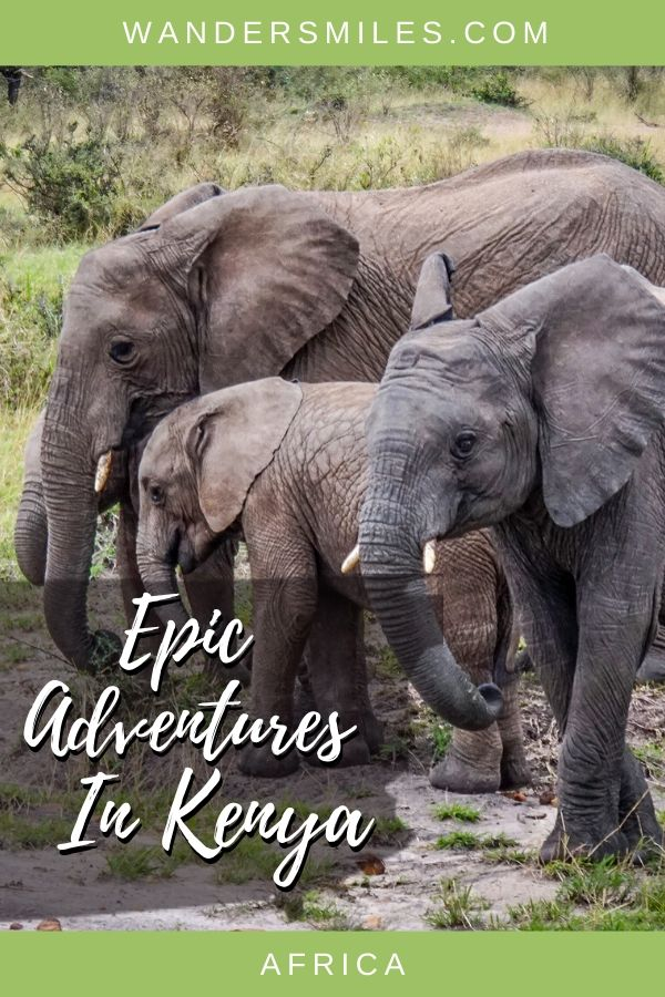 Enjoy safari and seeing the Big Five on the Maasai Mara and other amazing adventures in Kenya