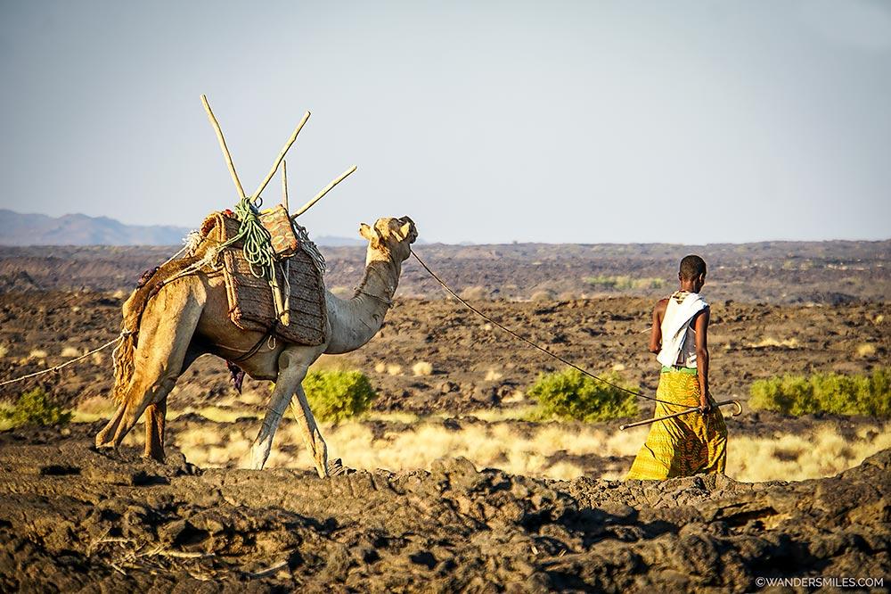 Camel caravan at the base of Erta Ale volcano in Ethiopia