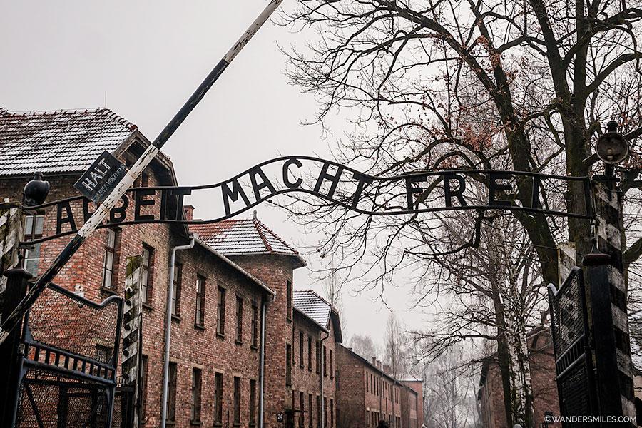 Auschwitz-Birkenau - Day trips from Krakow - 69km away