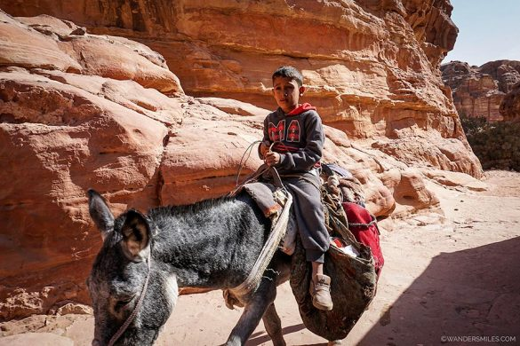 Bedouin boy riding a donkey at Petra in Jordan