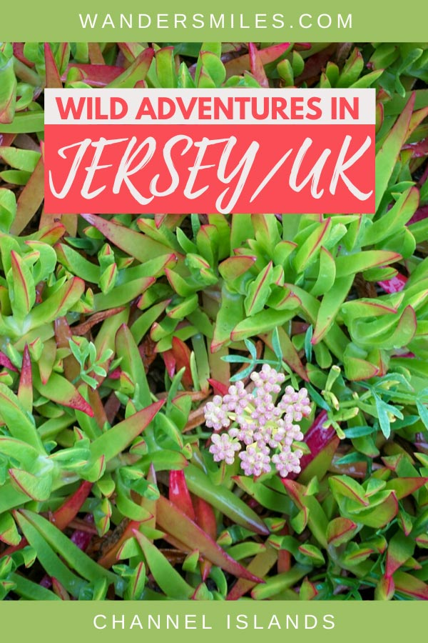 Learn foraging and bushcraft with Wild Adventures activities company in Jersey, Channel Islands