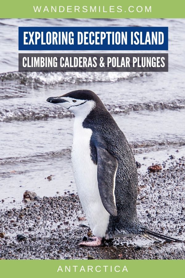Watch the penguins, climb calderas and polar plunges on Deception Island