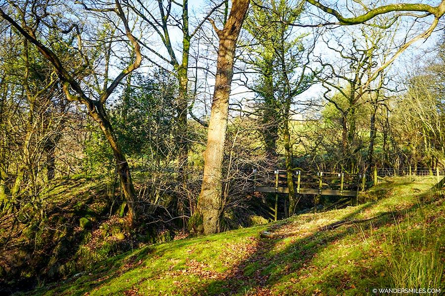 Footbridge by Windy Hill near Saddle Fell, Trough of Bowland