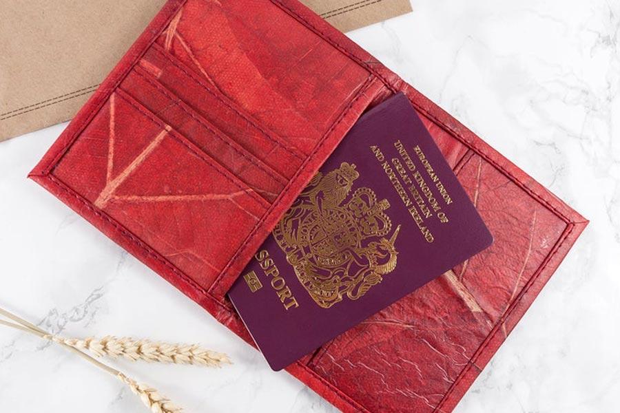Vegan Passport Cover