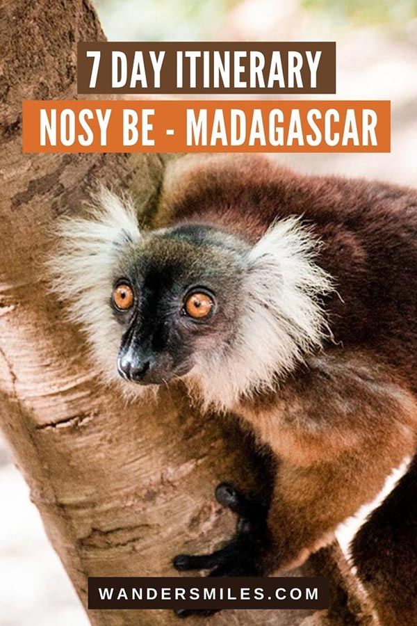 Perfect 7 Day Nosy Be itinerary seeing Madagascar's unique wildlife and biodiversity