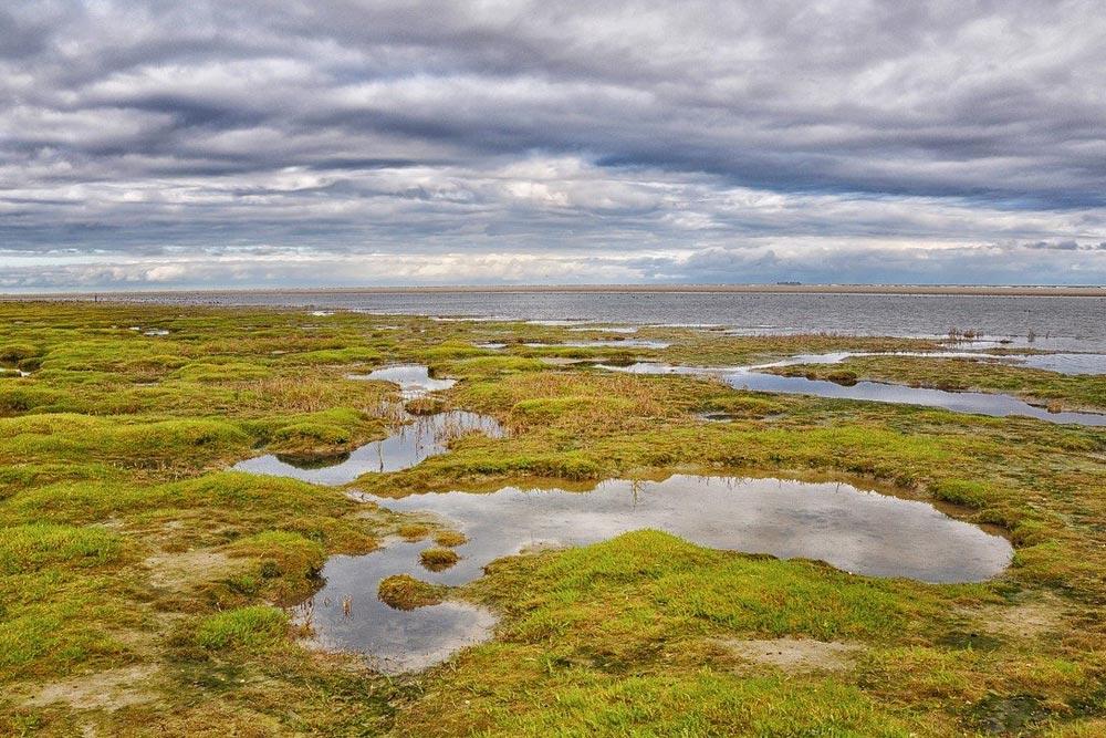 Coastal reservoir and sand dunes of Ameland in Holland
