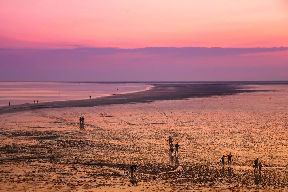 Mudflat Hiking by the Wadden Sea in the Netherlands