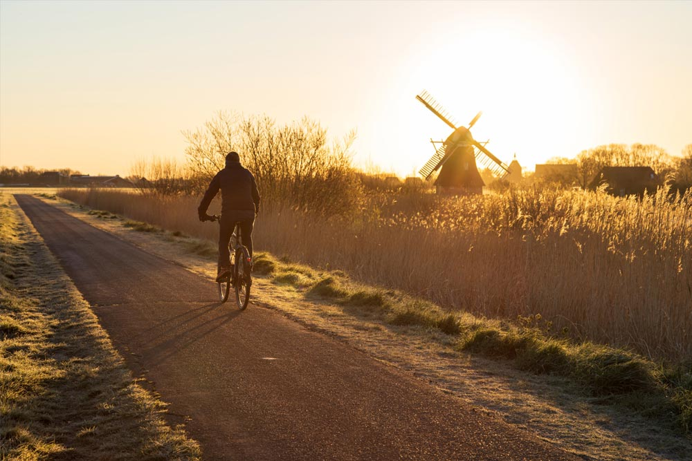 Cycling in the National Parks - Best Outdoor Activities in the Netherlands