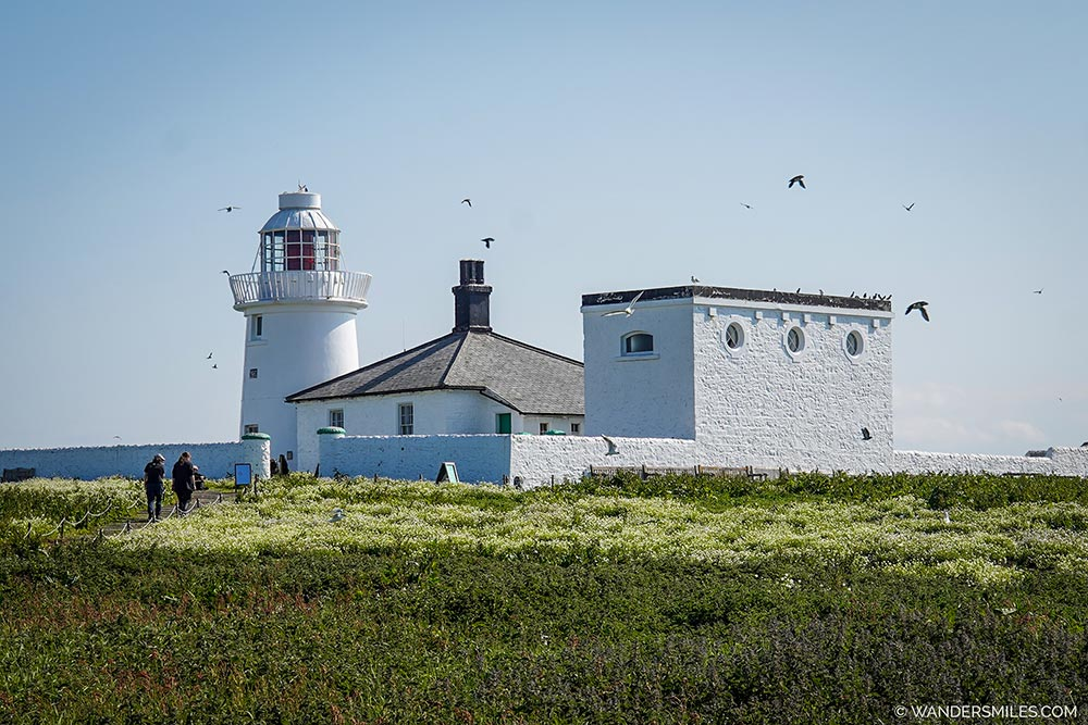 White Inner Farne Lighthouse