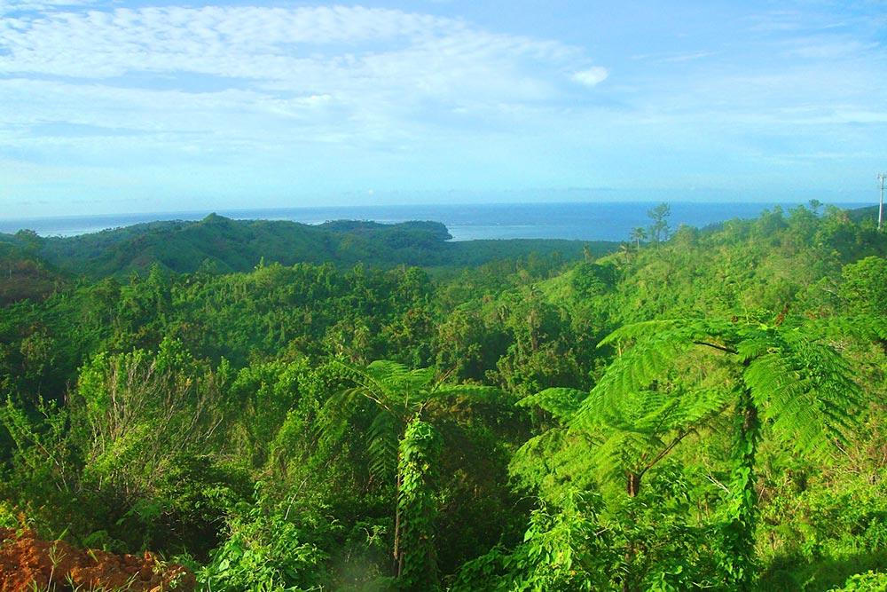 Pacific Harbour Zipline in Fiji - Zipline in Oceania