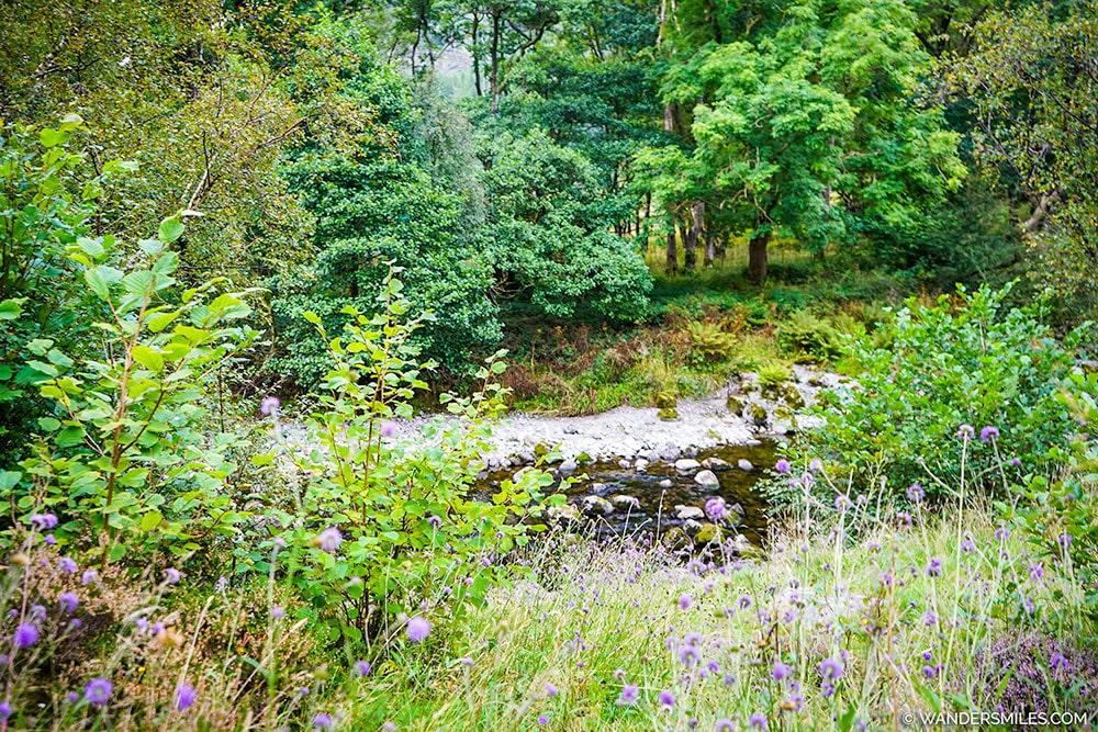 River Derwent at YHA Borrowdale