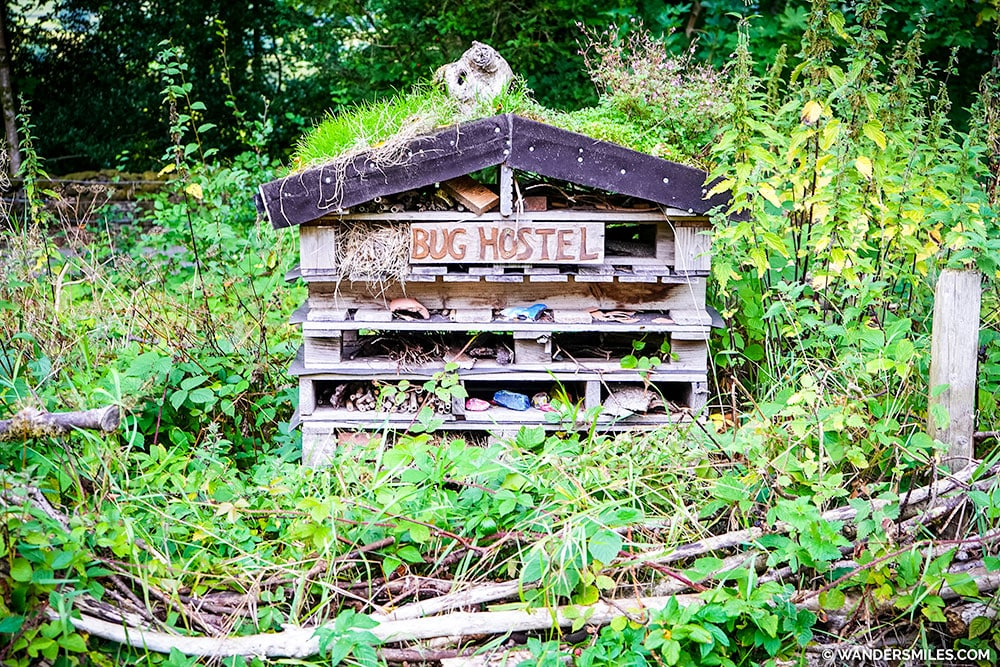 Bug Hostel at YHA Hawkshead